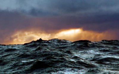 Navigating the seas of change